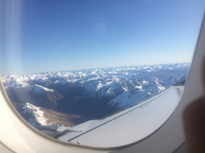 nz plane window